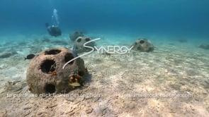 2197 nice shot of reef balls as scuba diver observes