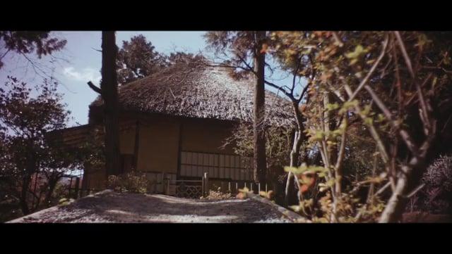 京の散歩 11