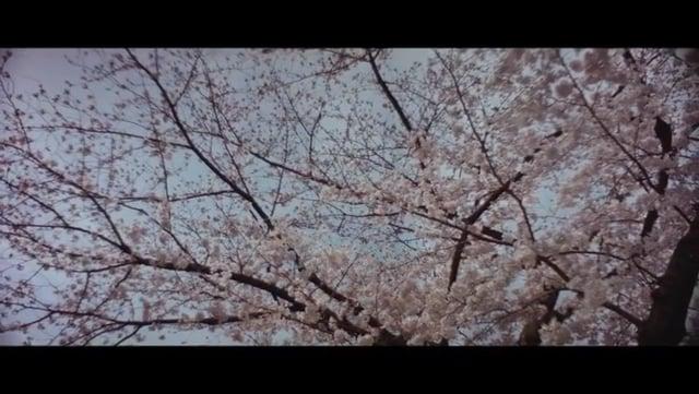 京の散歩 13