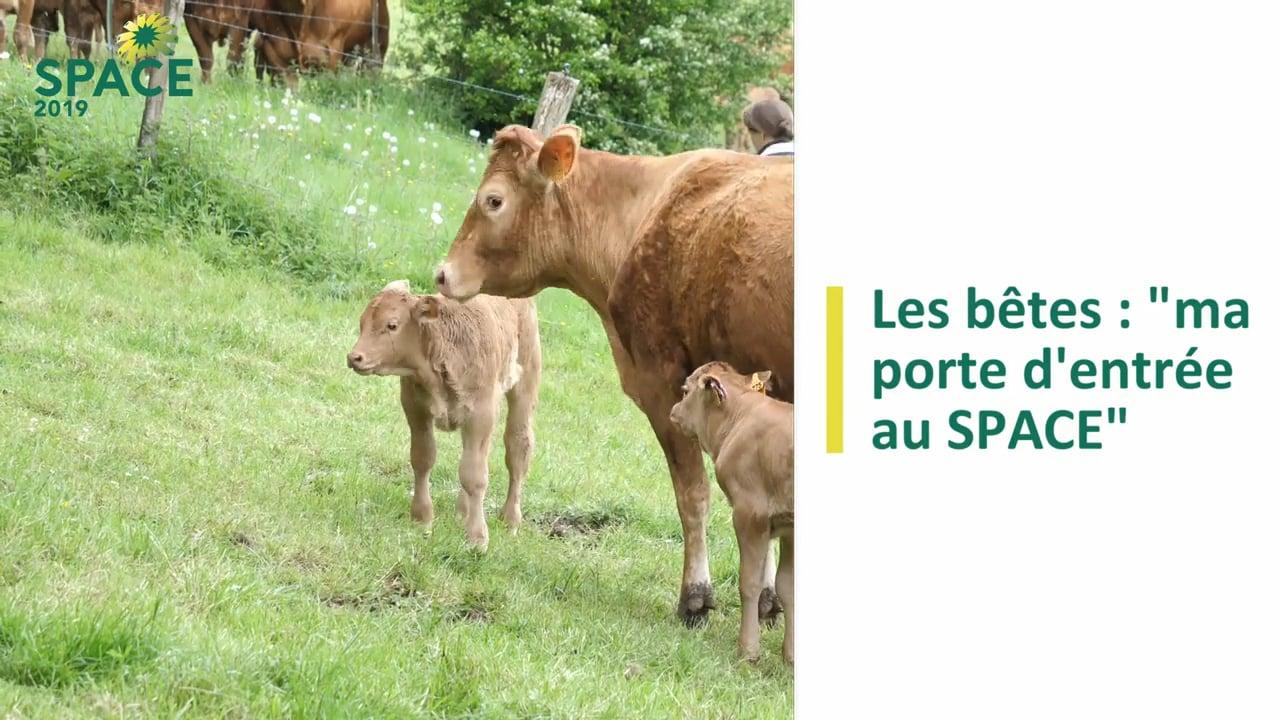 [Le SPACE et moi] Témoignage de Marie Bills, éleveuse de vaches allaitantes