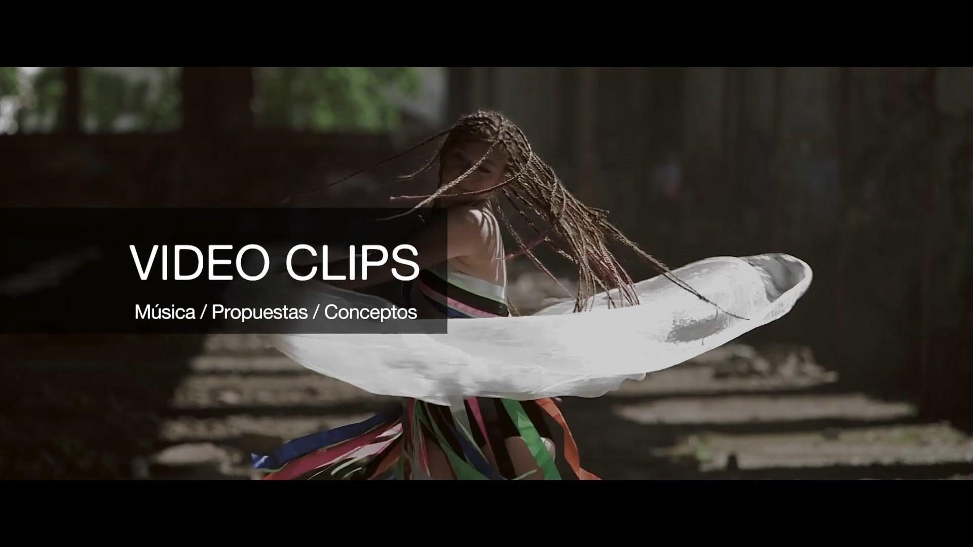 Video clips conceptuales