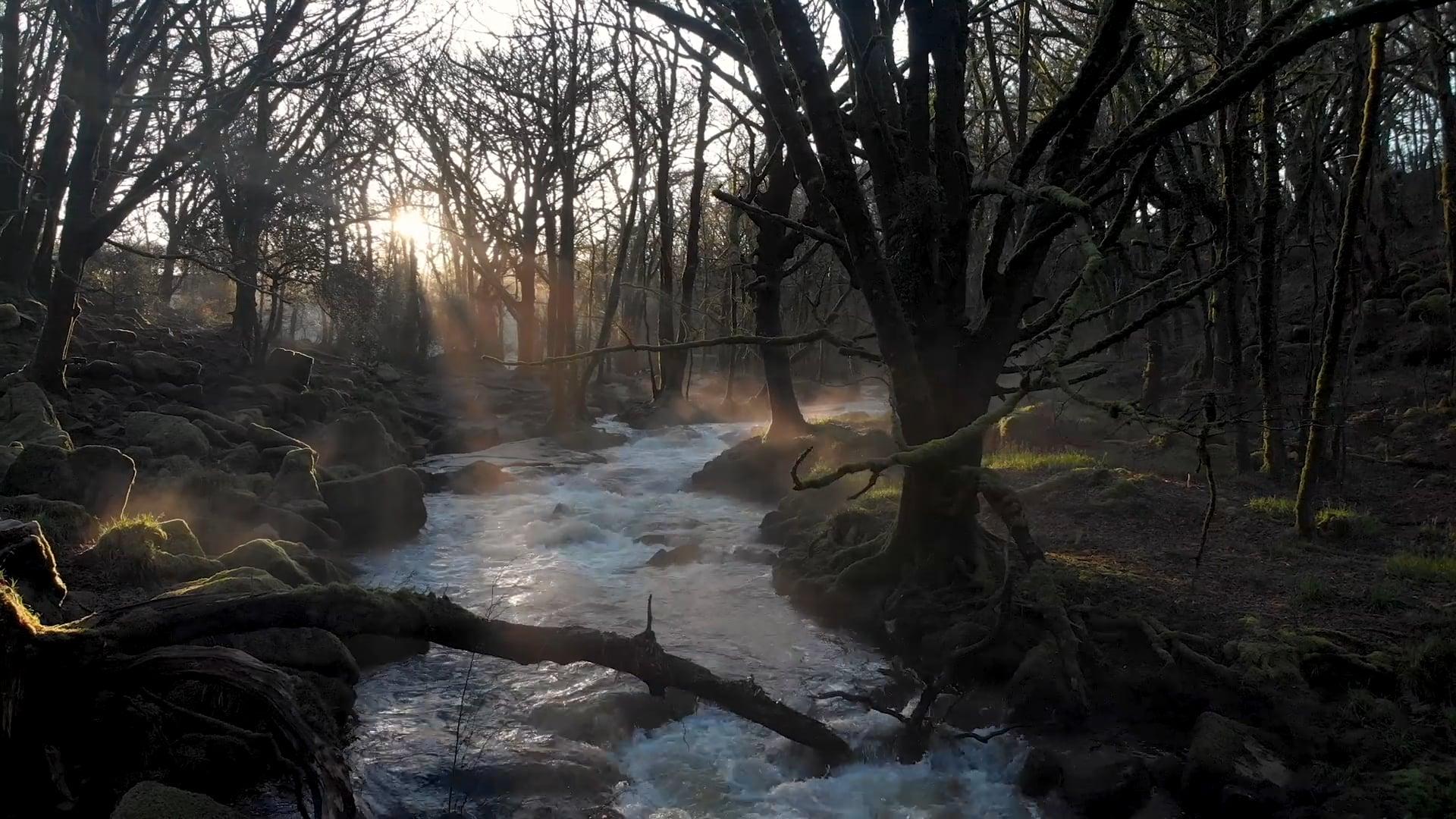 Beneath the Flow