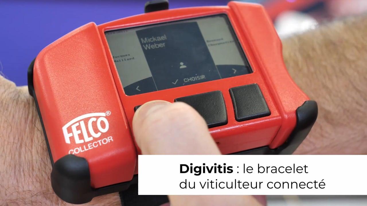 Tendance : avec Digivitis, les viticulteurs ont leur bracelet connecté