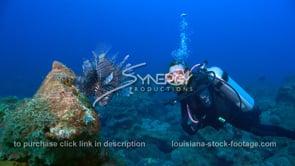 2256 scuba diver studies lionfish