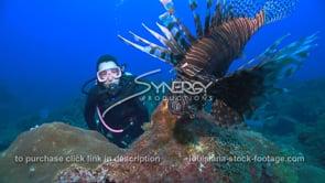 2258 scientist scuba diver observes invasive species lionfish