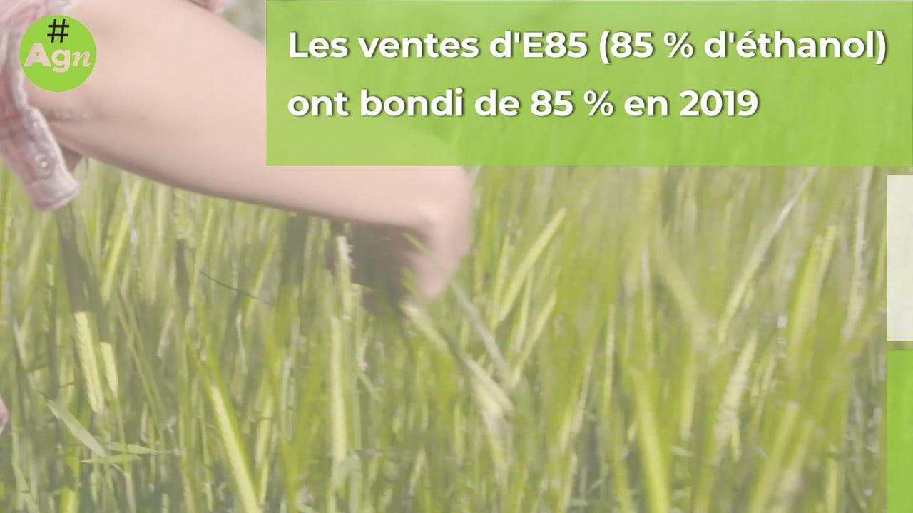 #AgriGoodNews : la consommation de biocarburants explose