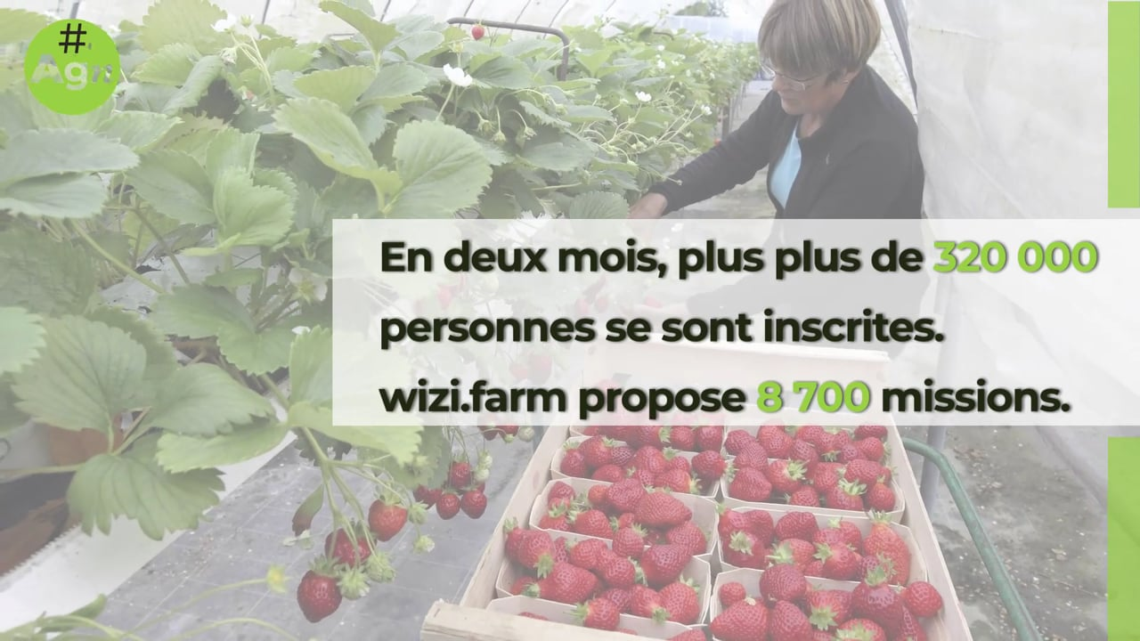 #desBrasPourTonAssiette : le succés de l'opération de WiziFarm se confirme