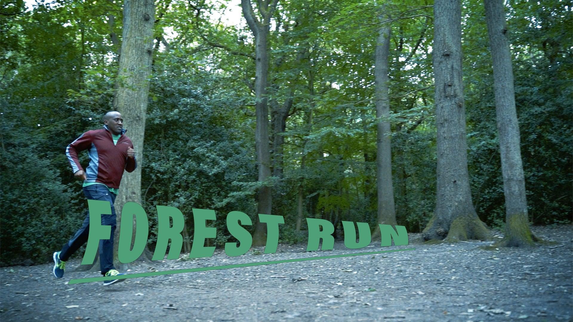 Forest Run