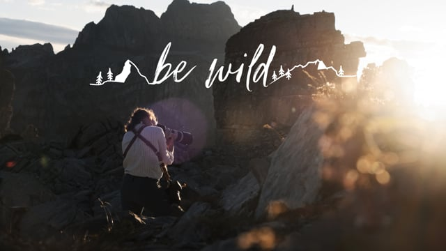 Be Wild Photography