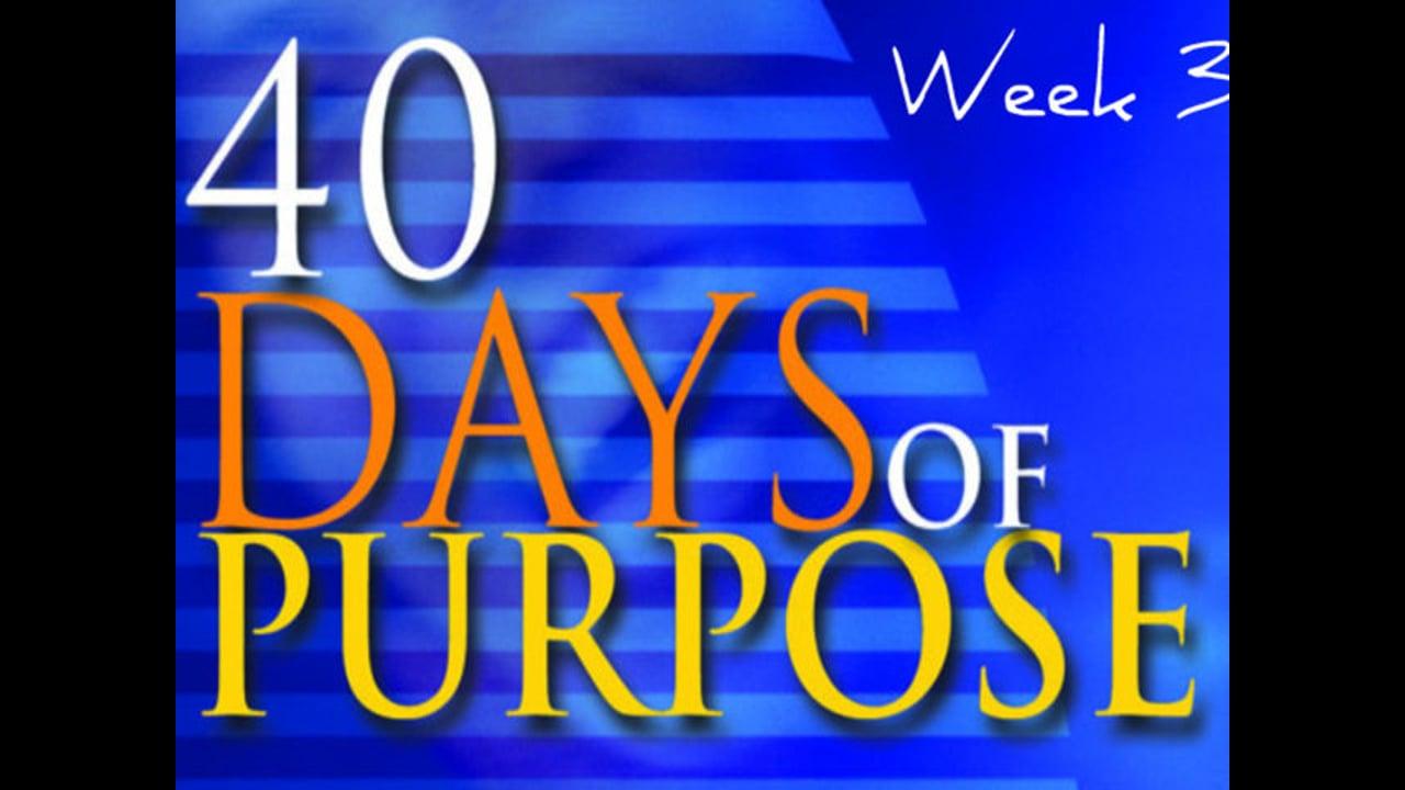 40 Days Of Purpose Week3