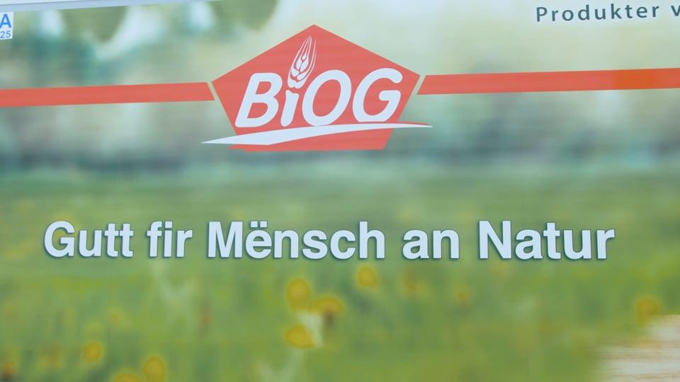 """Die BIOG ist vor über 30 Jahren gegründet worden, um die Produkte der BIO-Bauern auf den Markt zu bringen und zu verarbeiten. Seit dieser Zeit vermarktet die BIOG verschiedene Bereiche von Produkten, dazu gehören Milchprodukte die in der BIOG-Molkerei verarbeitet und dann über BIOGROS vertrieben werden. Der Großhändler verarbeitet und vertreibt ebenfalls das von den luxemburgischen Bio-Bauern produzierte Getreide, sowie Obst und Gemüse. Das gemeinsame Motto """"fair a kooperativ mat de Bio-Baueren"""" ist ein öffentliches Bekenntnis zur engen Verbundenheit zwischen bäuerlichem Schaffen und händlerischem Tun."""