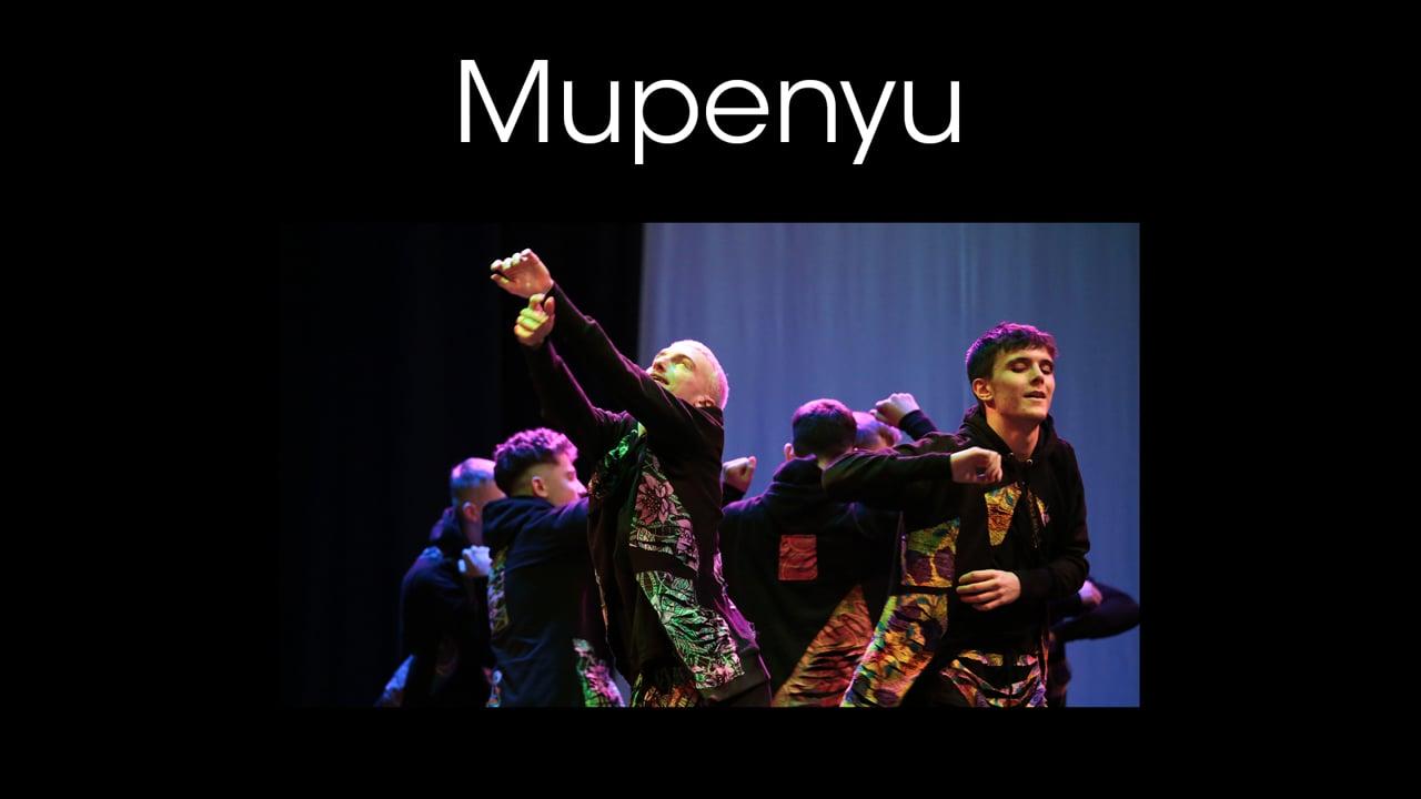 Collections 2019 - Mupenyu