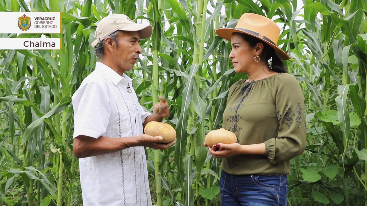 Orgullo Veracruzano: Chalma