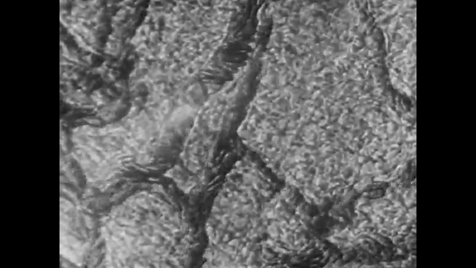 Paul Vinsonhaler - Fermi Paradox (Music Video)