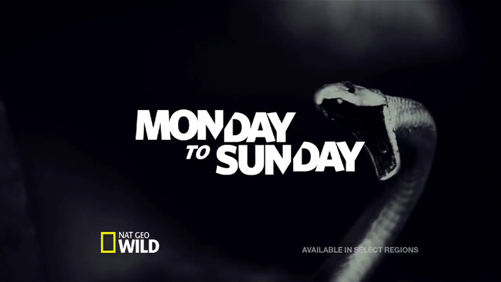 'Deadliest Week Ever' Promo Spot