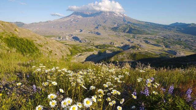 Mt. St. Helens, Episode 1
