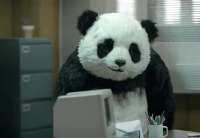 Never say no to a Panda !