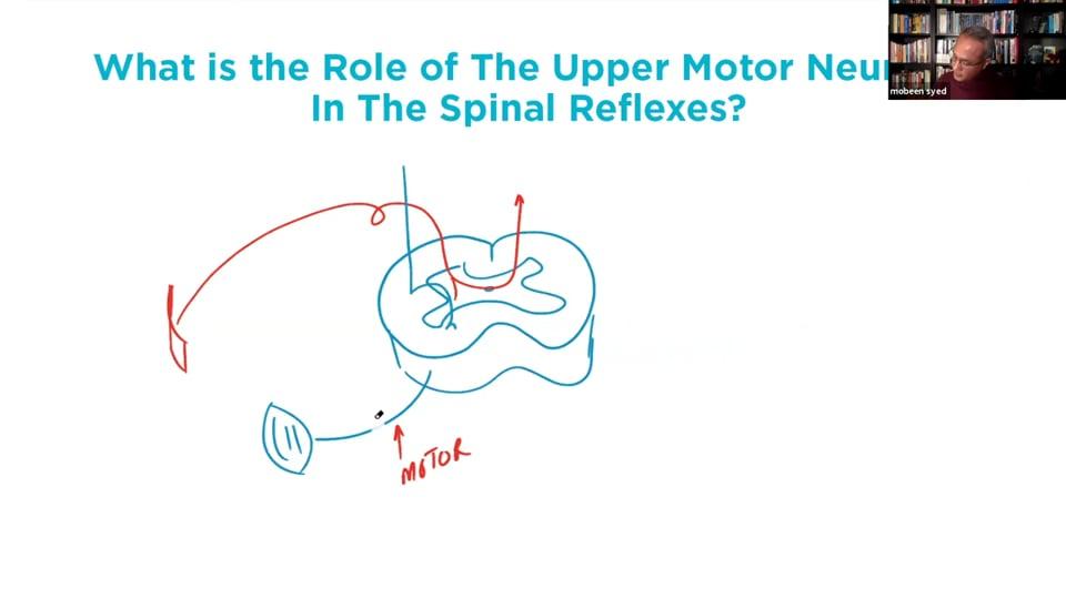 Webinar - Lower Limb Reflexes and Upper Motor Neuron Lesion (Part 2)