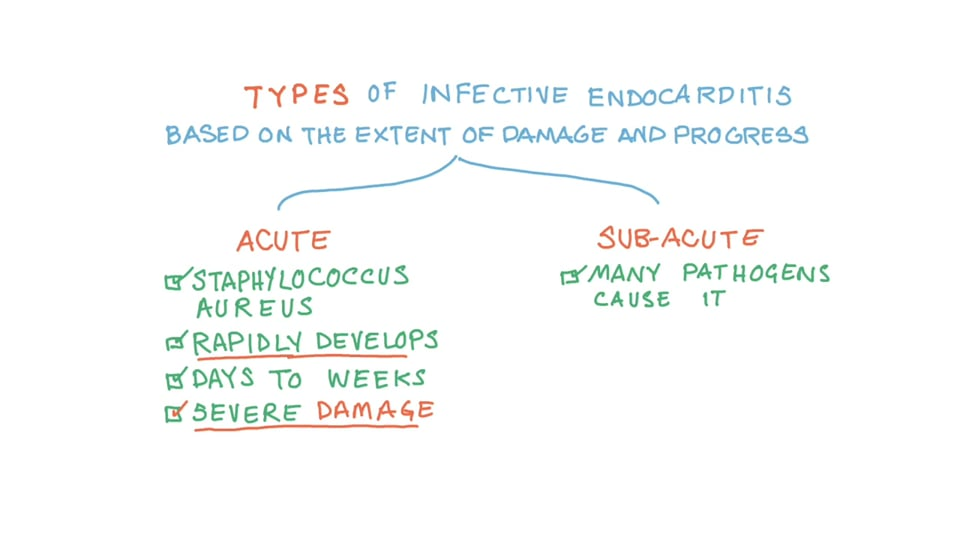 Staphylococcal Infective Endocarditis - (Staphylococcus)