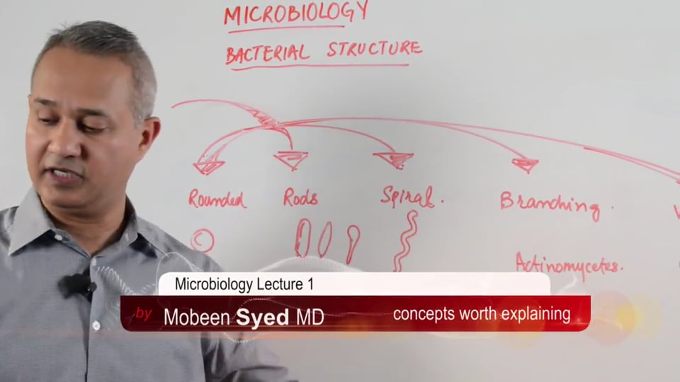 Microbiology: Bacterial Nomenclature