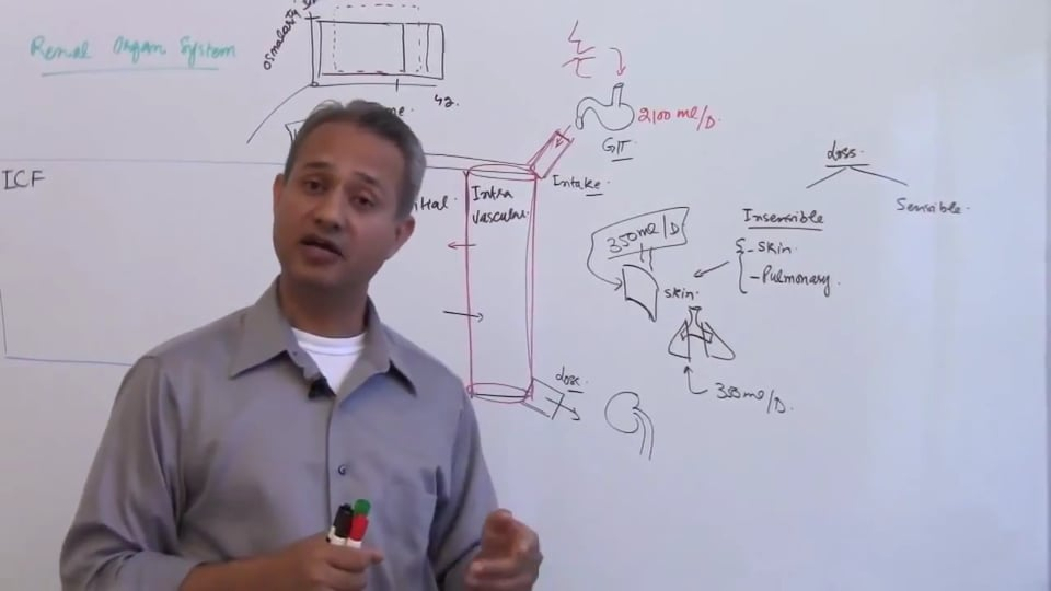First Session-Renal Physiology: (part 3)