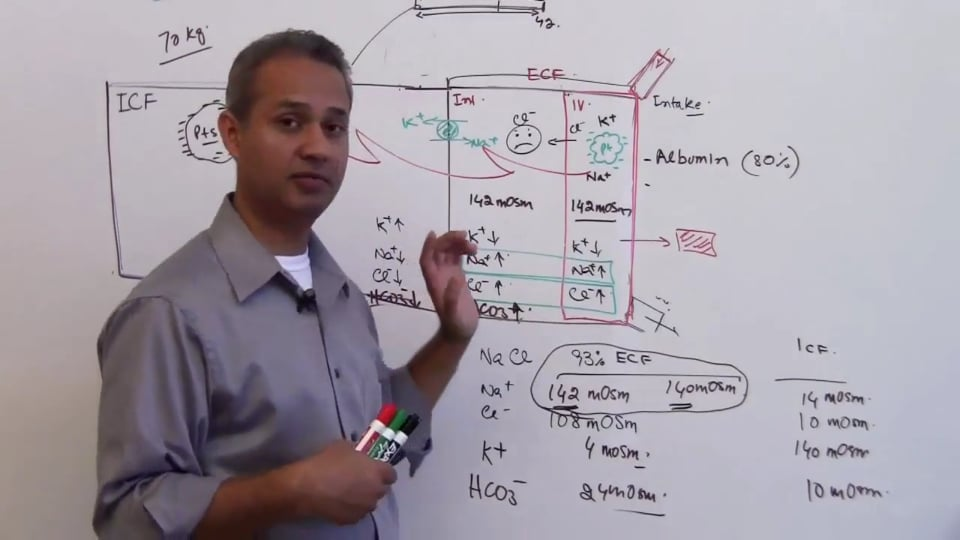 Second Session-Renal Physiology: (part 3)