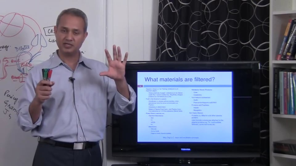 Fundamental of Renal System Lecture 2 Part 5/6