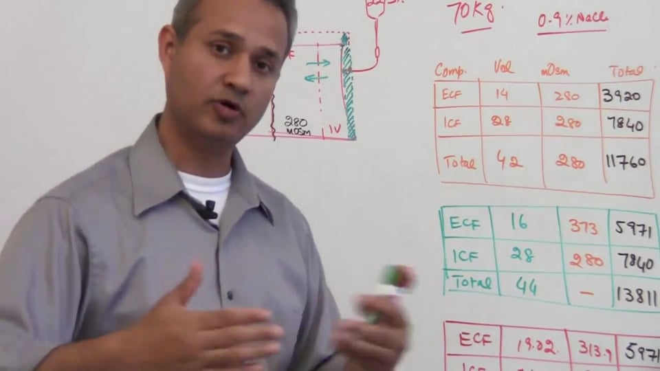 Fifth Session-Renal Physiology: (part 2)