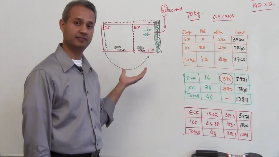 Fifth Session-Renal Physiology: (part 3)