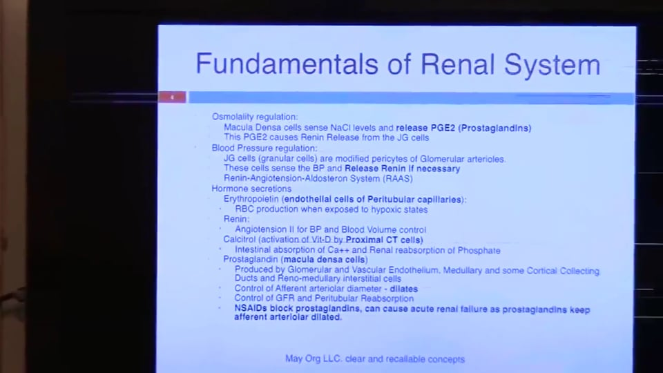 Third Session Renal System Fundamentals: (part 2)