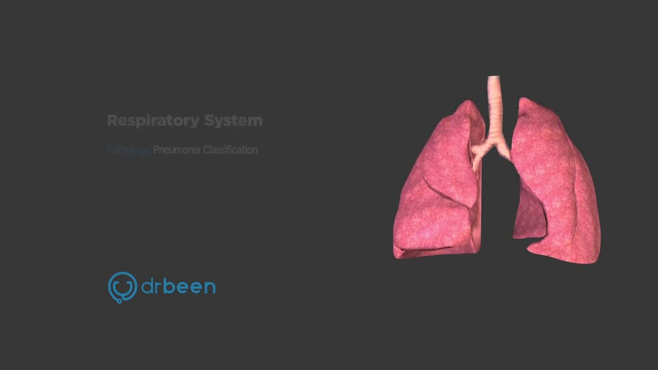 Pneumonia Classifications