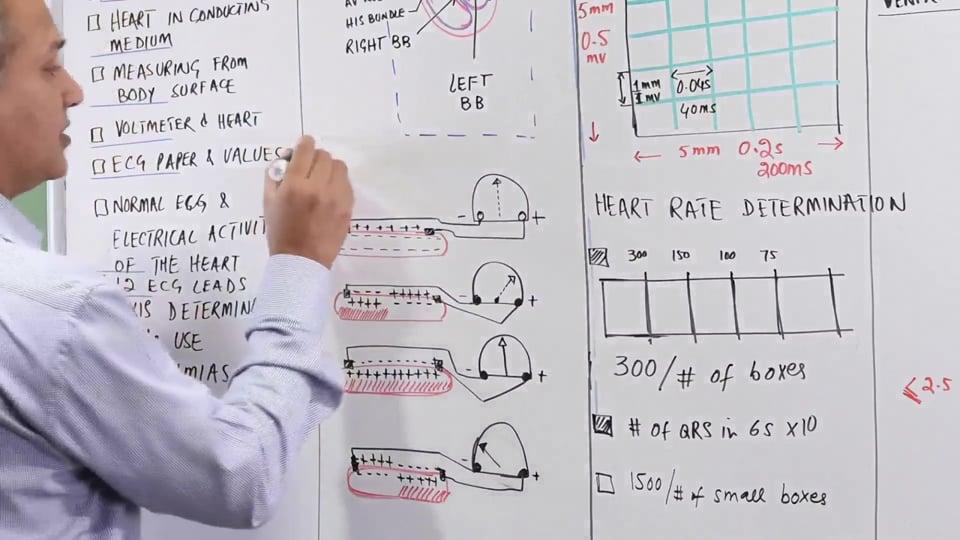 EKG Fundamentals: Measurement (Part 1)