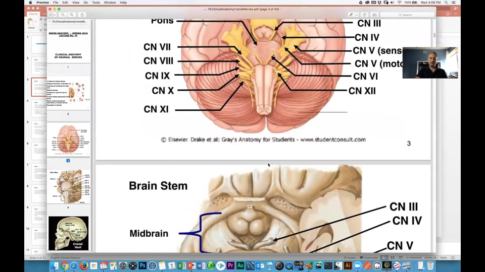 Cranial Nerves (Clinical Cases)