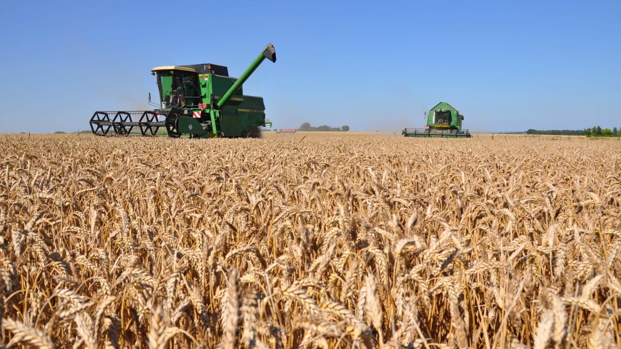 Le biocontrôle s'installe en agriculture