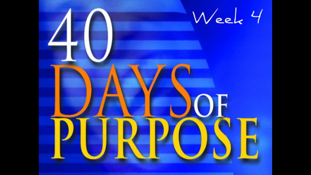 40 Days of Purpose Week 4