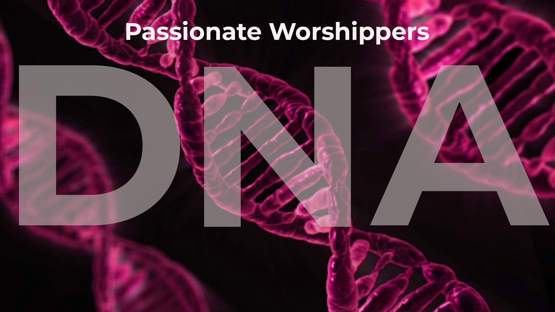 DNA - Passionate Worshippers