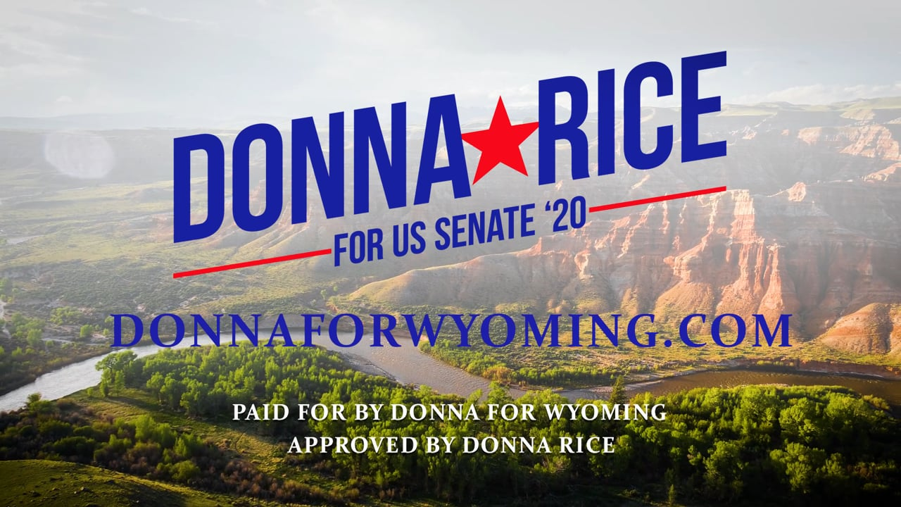 Introducing Donna Rice - Candidate for U. S. Senate