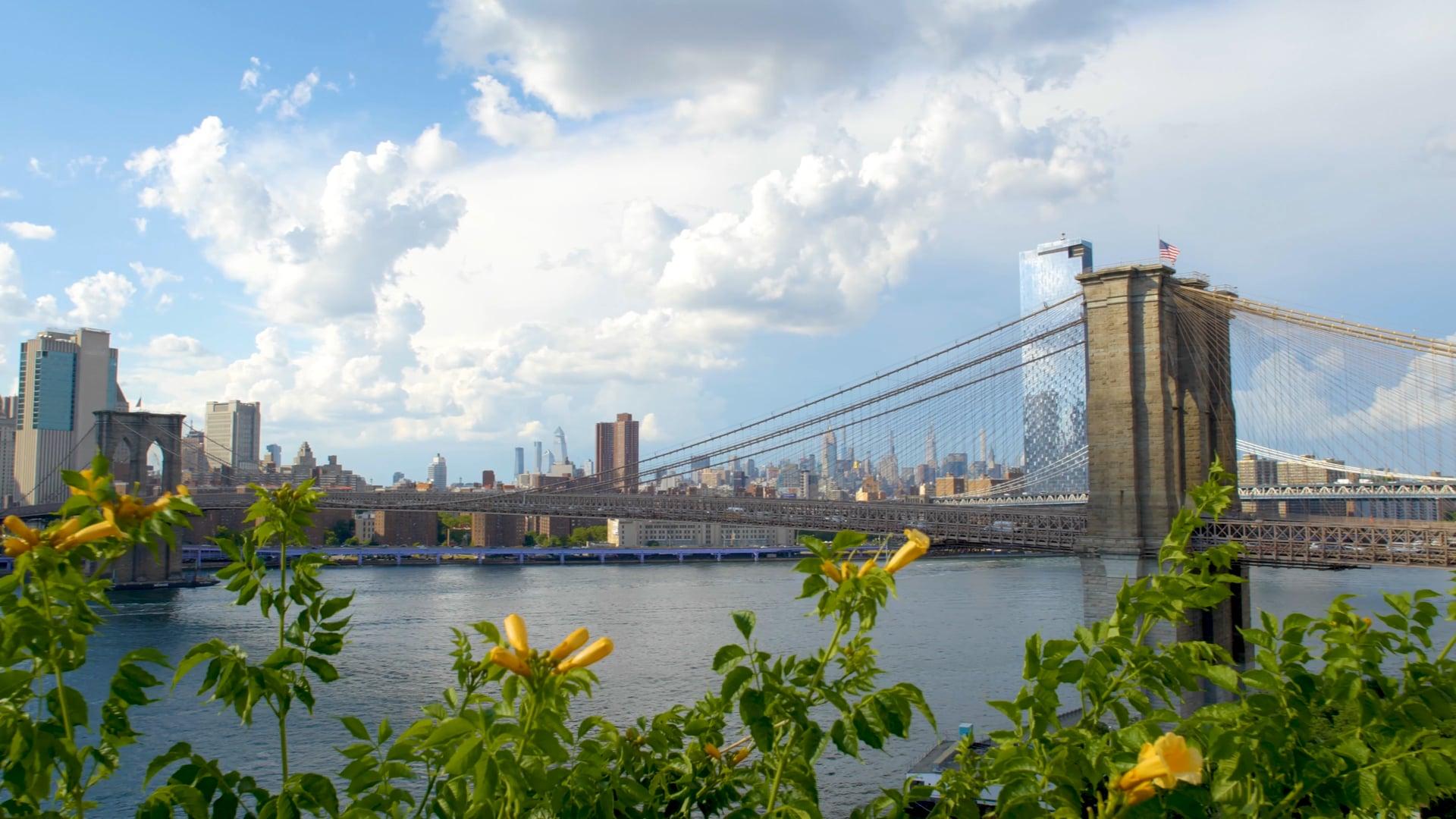 1 Hotel Brooklyn Bridge : Covid-19 Precautions