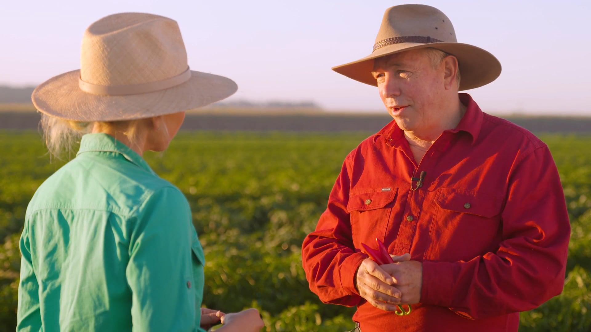 Meet a Chilli Farmer