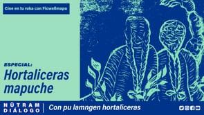 Nütram - Hortaliceras