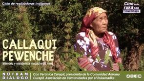 Nütram - Resistencia mapuche