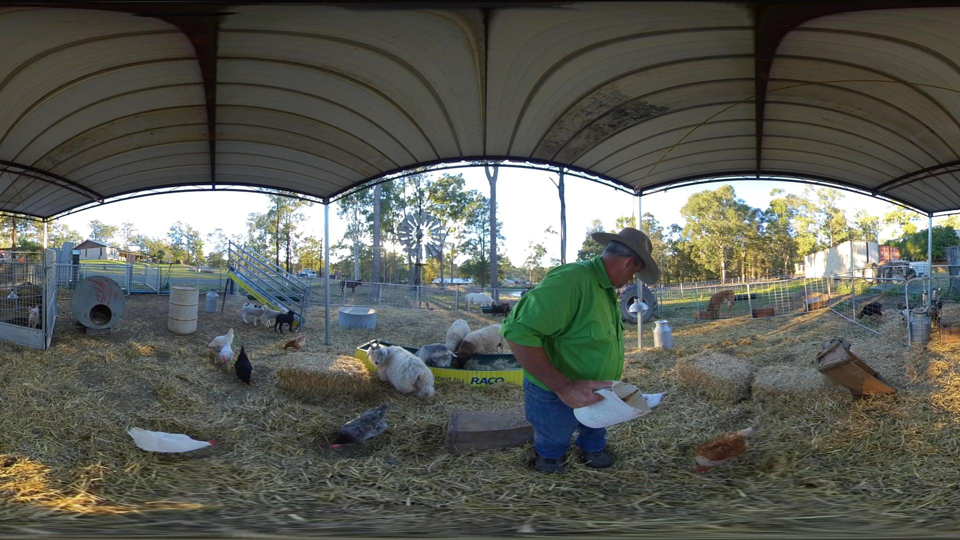 Day 7 | 360 Animal Nursery