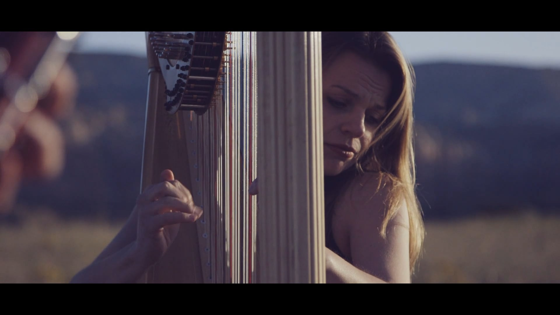 The Song On The Land by Ronn Yedidia (Music Video)