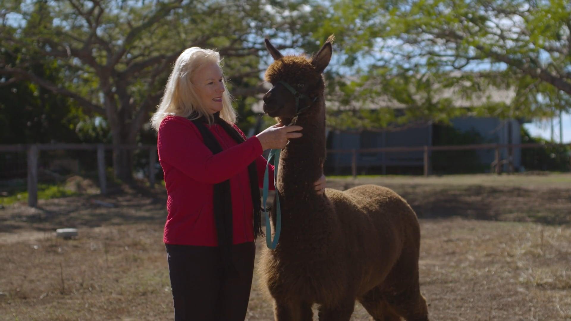 Meet an Alpaca Farmer
