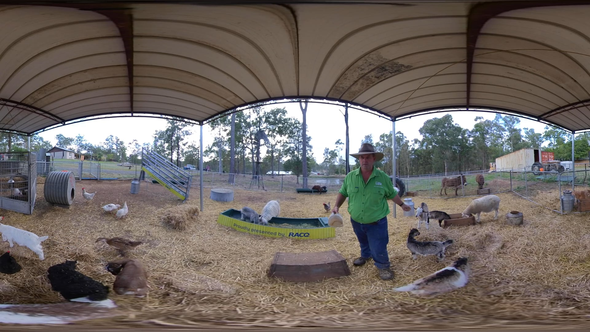 Day 9 | 360 Animal Nursery