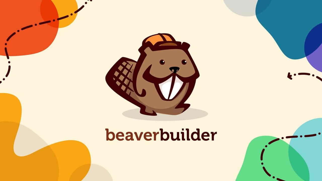 Beaver Builder DIY Video