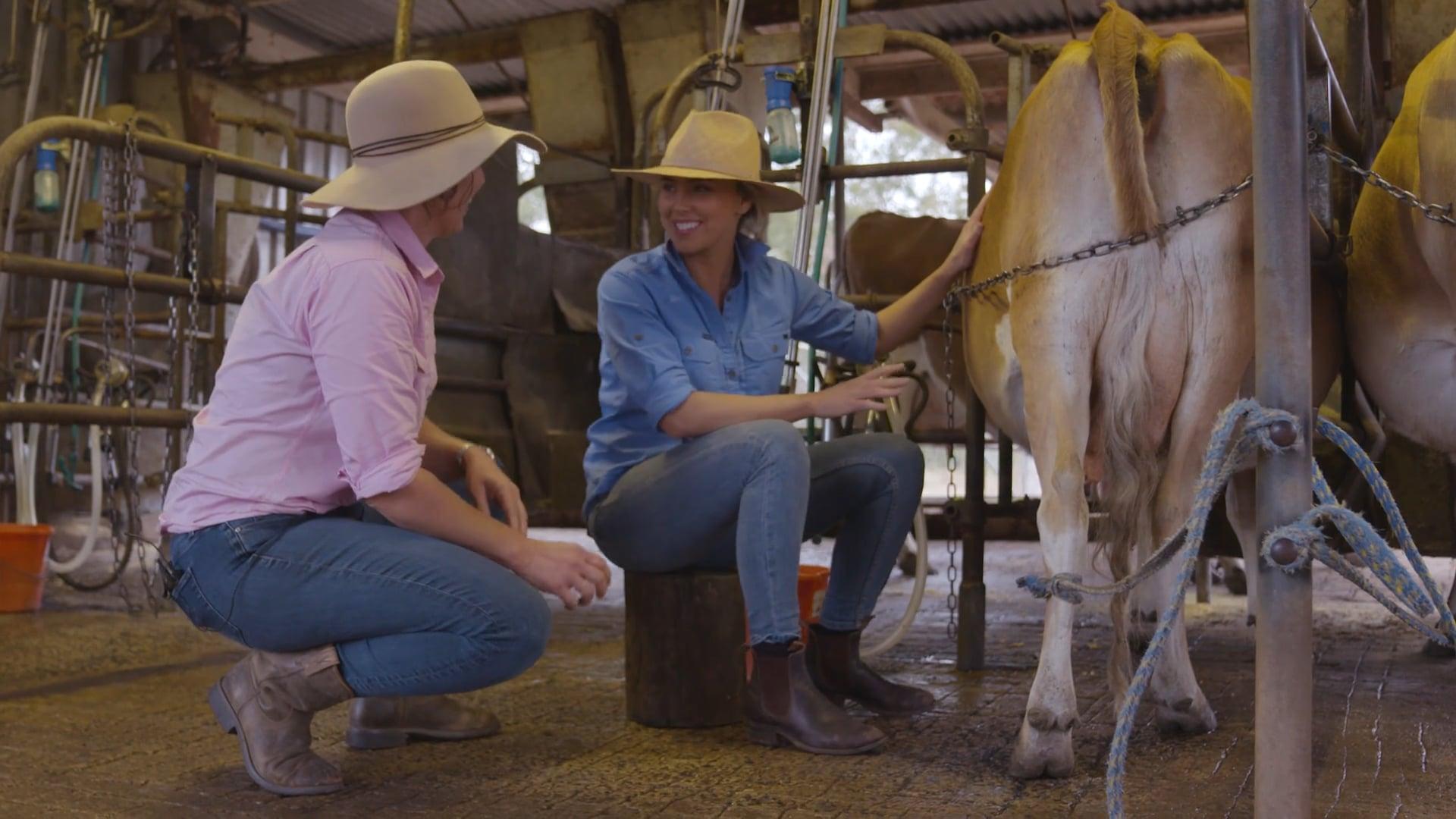 Meet a Dairy Farmer