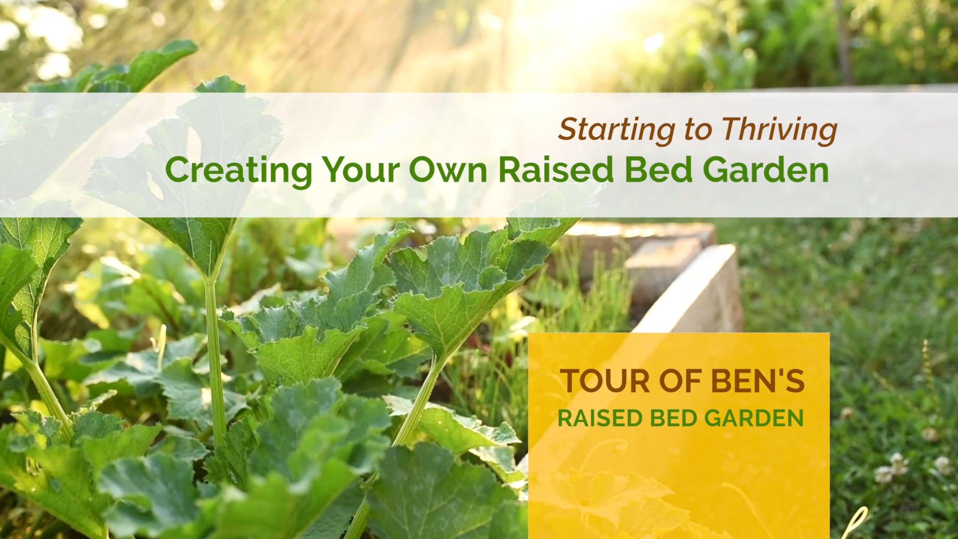 #2 Ben's Tour of his Raised Bed Garden
