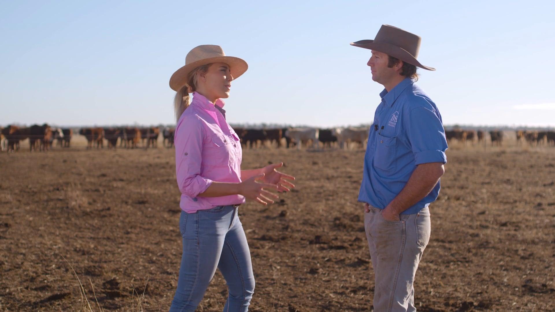 Meet a Beef Farmer