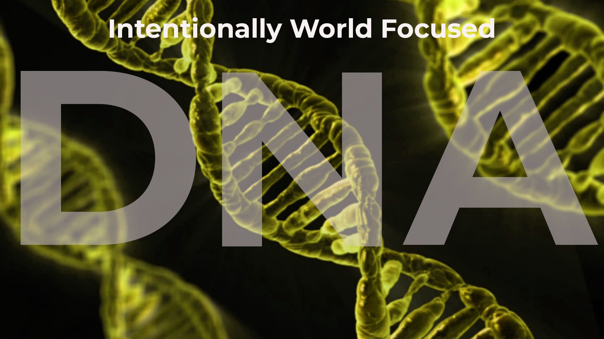 DNA - Intentionally World-Focused
